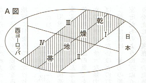 画像の表示